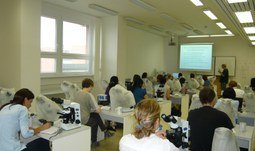 Summer Course - Faculty of Science