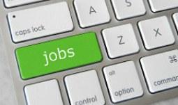 Volná pracovní místa