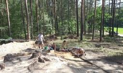 Archeologové z JU pomáhají při průzkumu mohyl z doby bronzové a železné