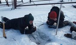 Centrum polární ekologie Jihočeské univerzity se stalo členem významné celosvětové organizace zabývající se výchovou mladých expertů v oborech polární vědy a ve výzkumu Arktidy