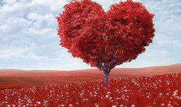 Centrum prevence nabízí zdarma úpravu životosprávy lidem, kterých se týká onemocnění srdce a cév