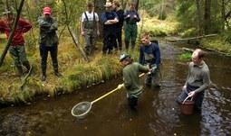 Fakulta rybářství a ochrany vod otevírá pro akademický rok 2013/2014 studijní obor v angličtině