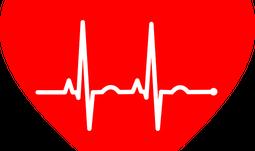 Kurzy na ZSF JU jsou zaměřené na srdečně cévní choroby a jejich prevenci