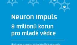 Neuron impuls 2017