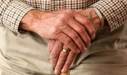 Odborníci ze ZSF JU budou odbornými poradci při vzniku seniorského bydlení v Třeboni