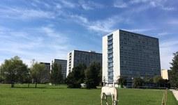 Rozhodnutí ředitele KaM JU č.2 / 2020 k cenám za ubytování v měsíci květnu 2020 na kolejích JU