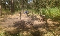 Výzkum zaniklých vesnic v Senegalu. Stopy v savaně očima archeologie a botaniky