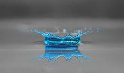 Den v modrém