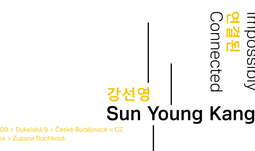 Sun Young Kang: Impossibly Connected